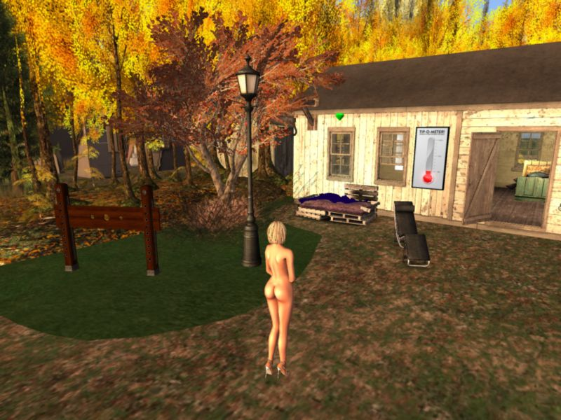 AFK sex in second life